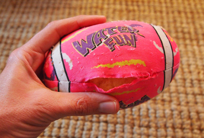 What My Cat's Quest for a Pink Football Taught Me About Perseverance