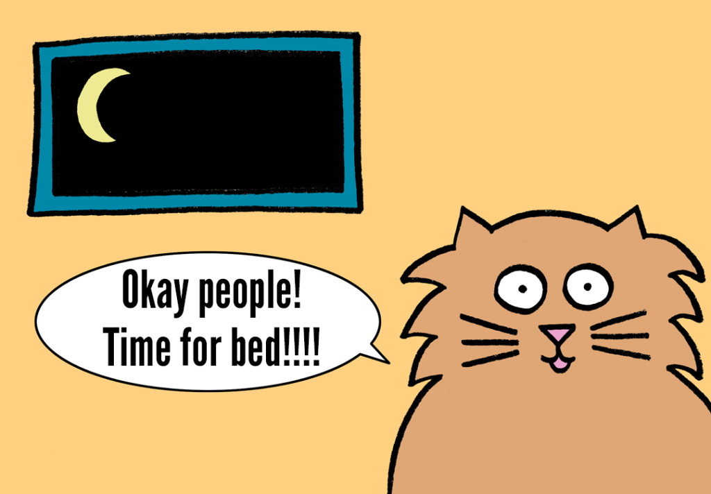 blog.cat ready for bed with talking