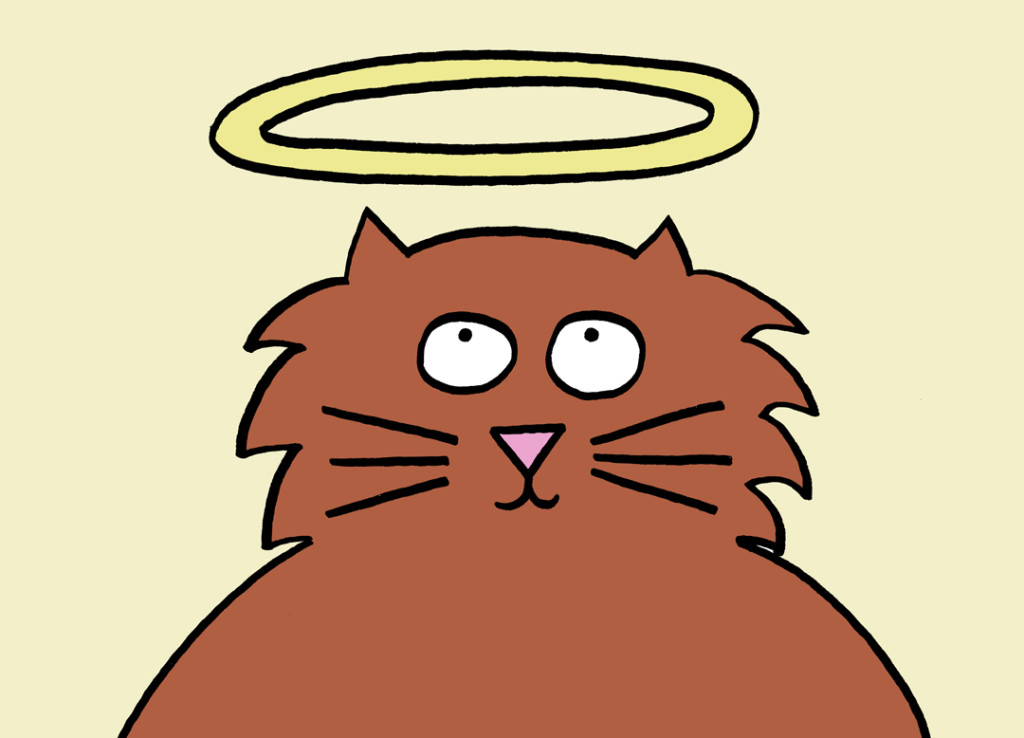 blog.cat with halo