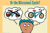 The Blisscious Cycle